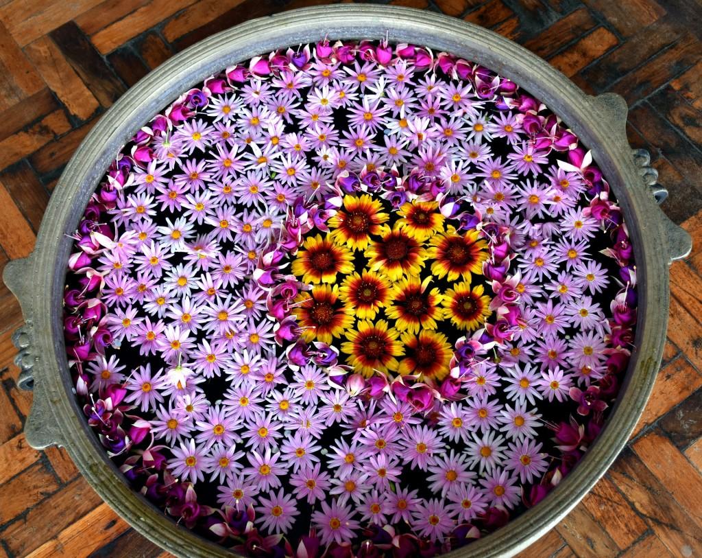 flower-1861496_1920