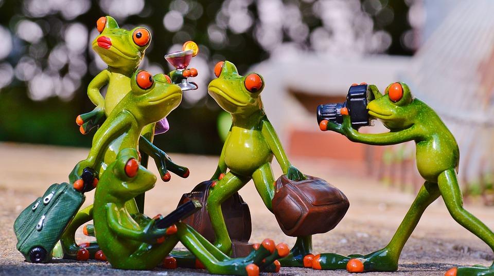 photography training institute