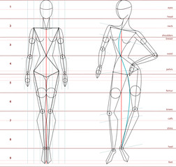 Proportion in Fashion